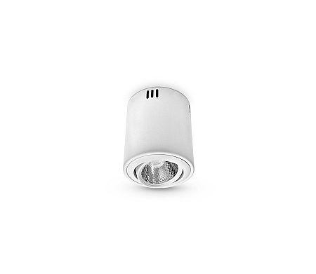 Brilum LED Mennyezeti lámpa 1xLED/12W/230V