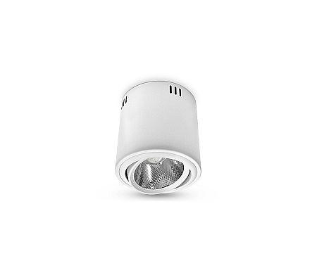 Brilum LED Mennyezeti lámpa 1xLED/18W/230V